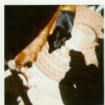 """Unsere Bordhunde """"Susi"""" und """"Wodka"""" auf dem Achterdeck.  (Buchholz 1969 / 1970)"""