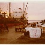 So arbeiteten im Jahre `72 die Hafenarbeiter auf Volos. Abtransport der Zellulose Ballen mit Eselskarren.