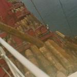Wir laden Logs (Baumstämme, Edelhölzer) voll Schiff, mit Deckslast